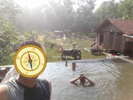 Tanah Pertanian 1.04Ekar Di Kampun Sg Mahang Nilai (Konsep Eco Resort)  133939084