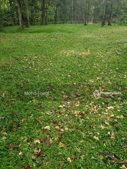 Tanah Pertanian 1.04Ekar Di Kampun Sg Mahang Nilai (Konsep Eco Resort)  133939089