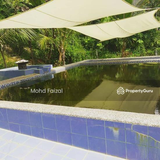 Tanah Pertanian 1.04Ekar Di Kampun Sg Mahang Nilai (Konsep Eco Resort)  133939090
