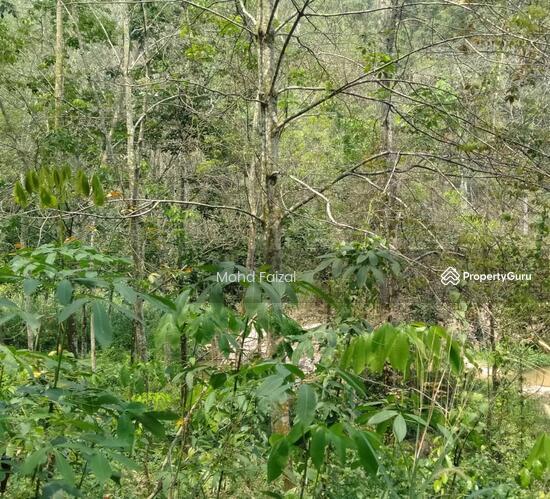 Tanah Kebun Getah 2 Ekar, Ulu Batang Benar, Nilai  133957398