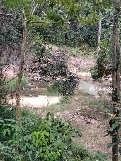 Tanah Kebun Getah 2 Ekar, Ulu Batang Benar, Nilai  133957402