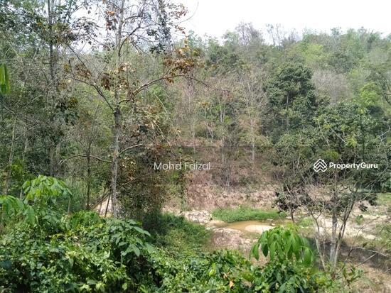 Tanah Kebun Getah 2 Ekar, Ulu Batang Benar, Nilai  133957407