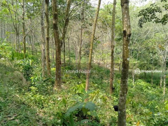 Tanah Kebun Getah 2 Ekar, Ulu Batang Benar, Nilai  133957416