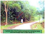 3010 Phase 1, Sungai Buloh Country Resort